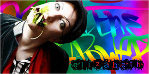 Liz Crazy Sig