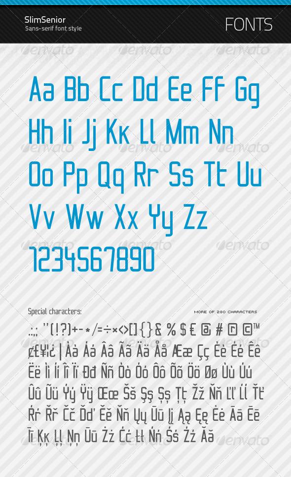 SlimSenior - True Type Font by artnook