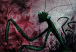 mantis 7 by unerde