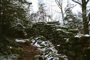 The Heathen Wall 04 by Meredyth