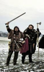 Viking Brothers by Meredyth