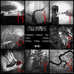 The Elder Futhark Runes - The Second Aett