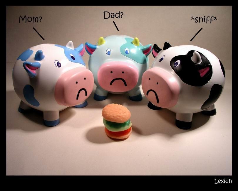 Je veux voir... - Page 2 The_sad_cows