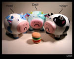 The sad cows