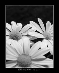 Dots and dashes B-W by lexidh