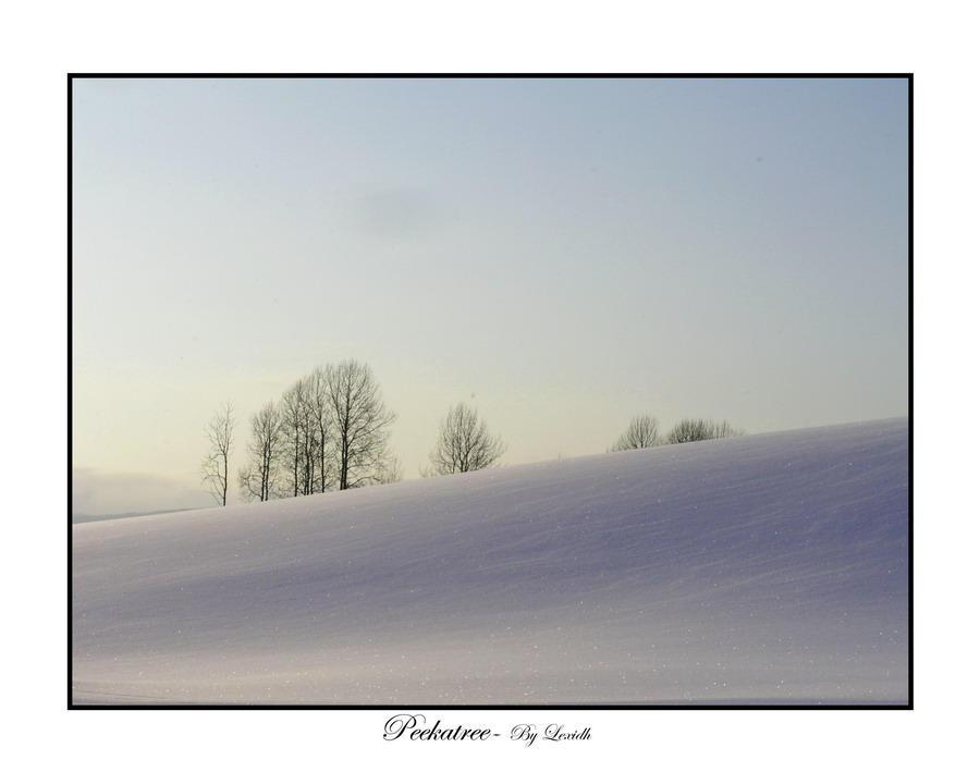 Peekatree by lexidh