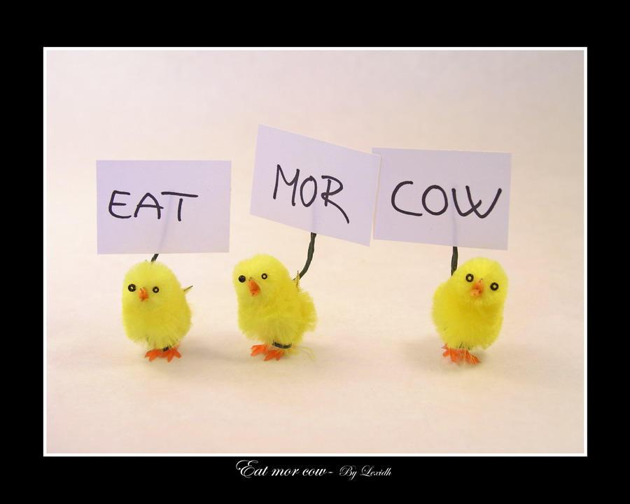 خفة ظل المصورين Eat_mor_cow_by_lexidh