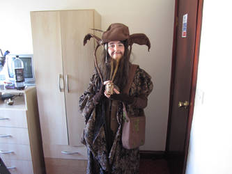 Another Radagast cosplay by filmfreak13