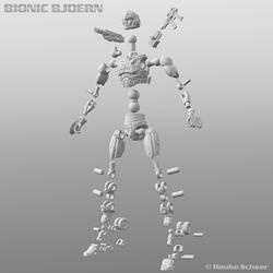Bionic Bjoern Joint Setup