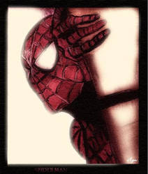 Spiderman 08 by AynElf
