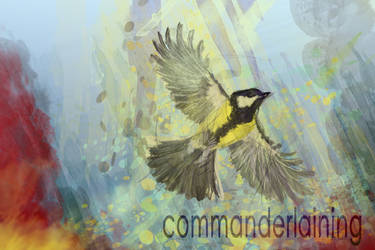 Bird of war by primepalindrome