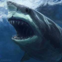 Some days you just wanna do shark paintings