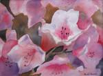 81. Full Bloom