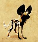 Daily Design: African Wild Dog