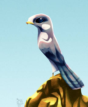 Daily Design: Peregrine Falcon