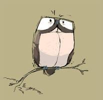 Warm Up - Owl