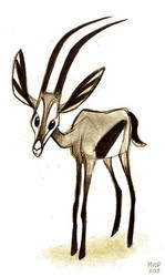 Gazelle Sketch