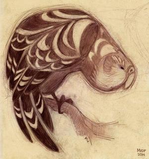 Kakapo Sketch