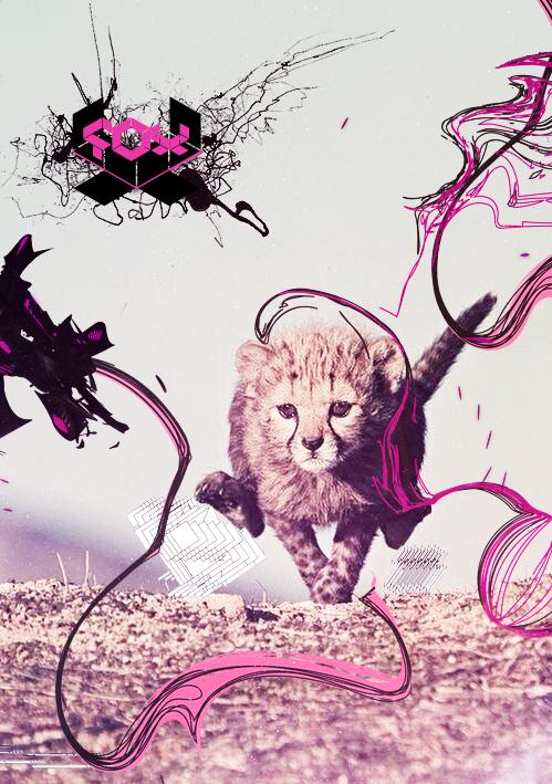 [Imagen: baby_leopard_by_5ontrol-d6ta906.jpg]