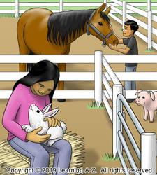 Petting Zoo - Image 3