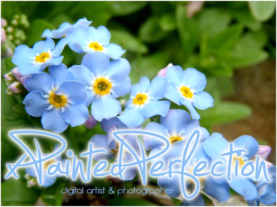 xPaintedPerfection's Profile Picture