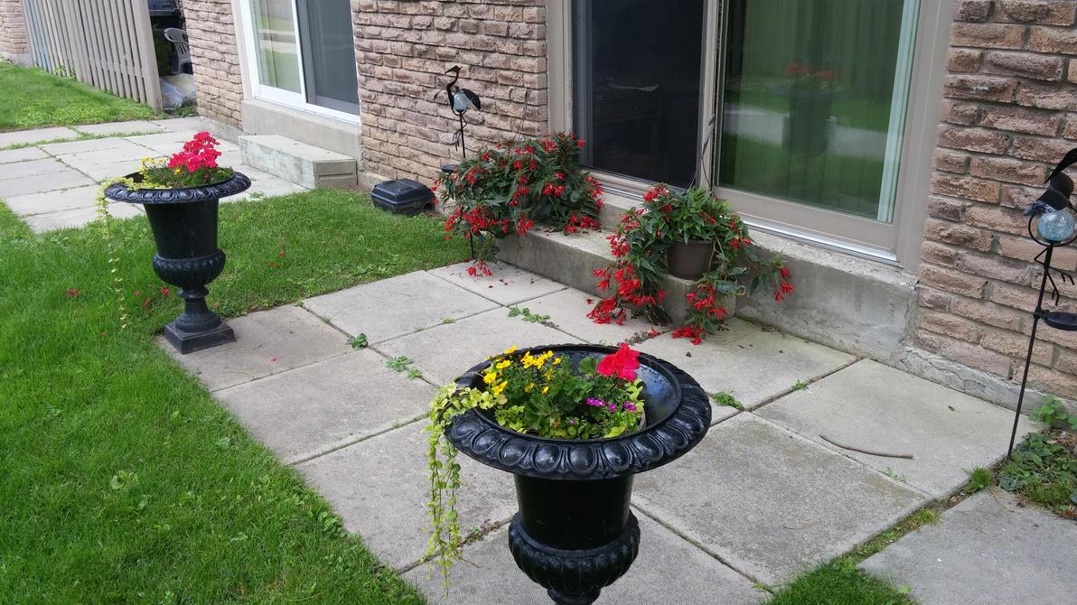 Front Garden Presence by Wintereye111