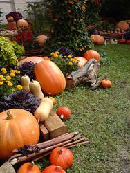 Magic of Autumn by great-queen-morrigan