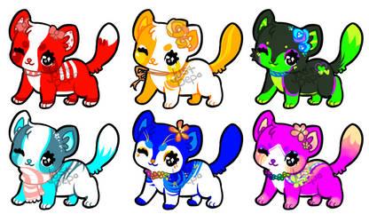 Open: Kittercats
