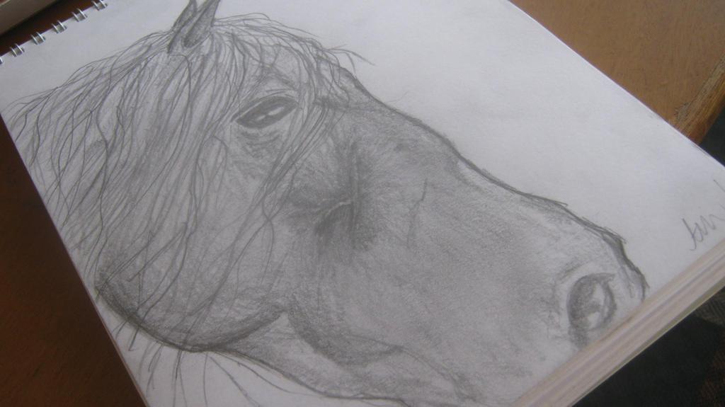 Freisan Drawing by Nalarules