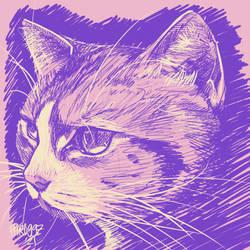 Mattie in purple