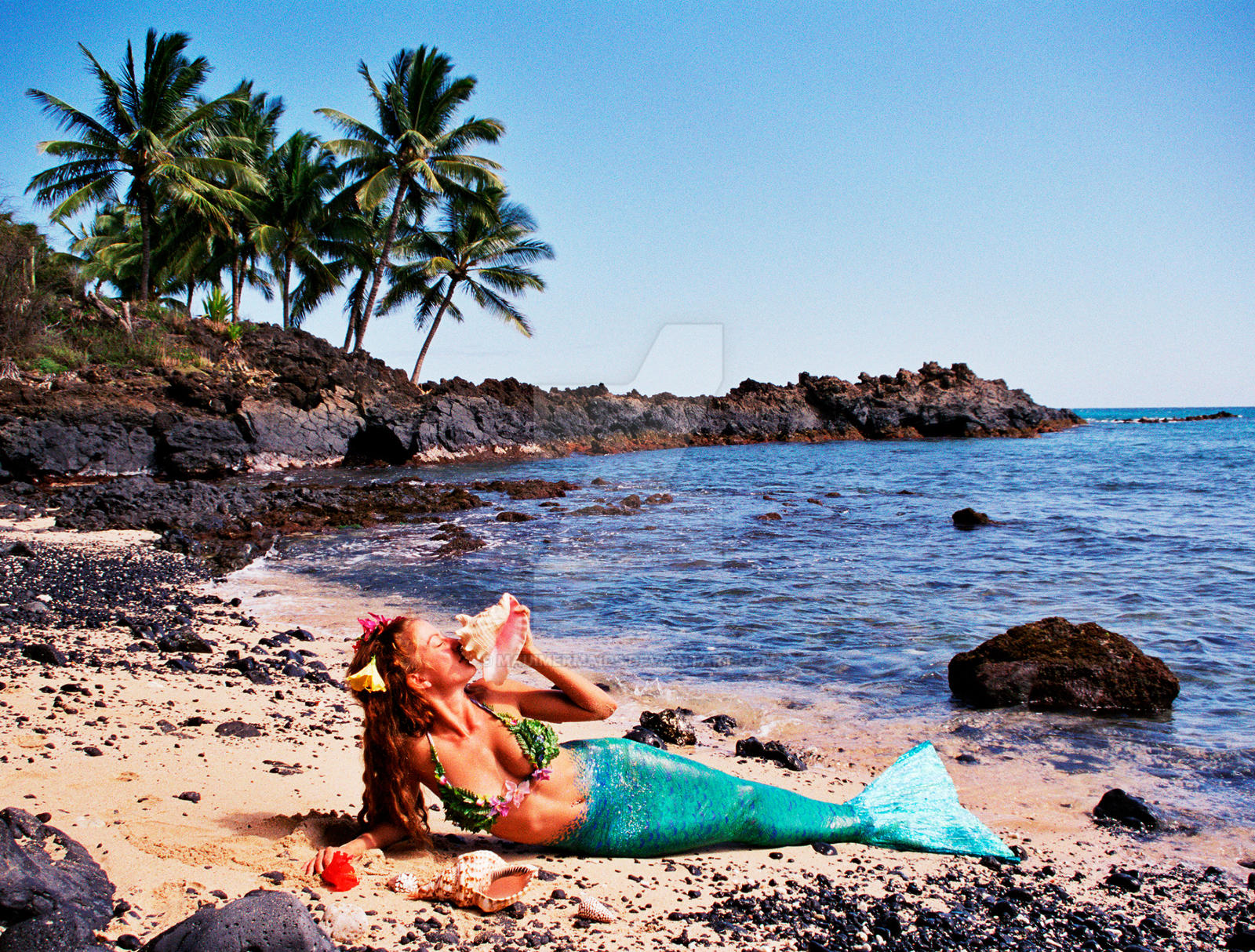 maui mermaids cove by mauimermaids on deviantart