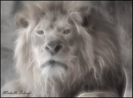 Lion in the Mist