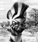 Mwangaze Koroho