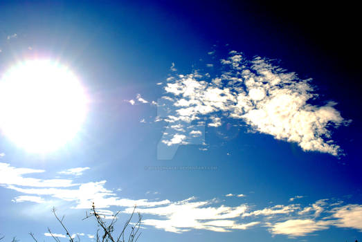 Sunny and Warm