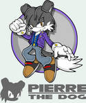 Pierre Channel Style