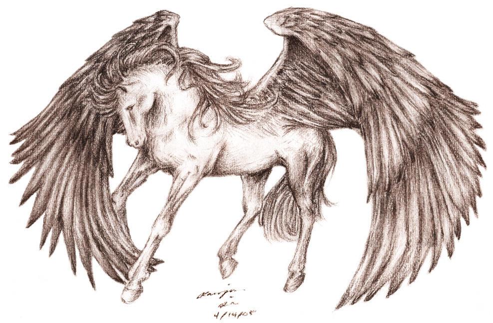 Pegasus on Pinterest  Pegasus  Pegasus