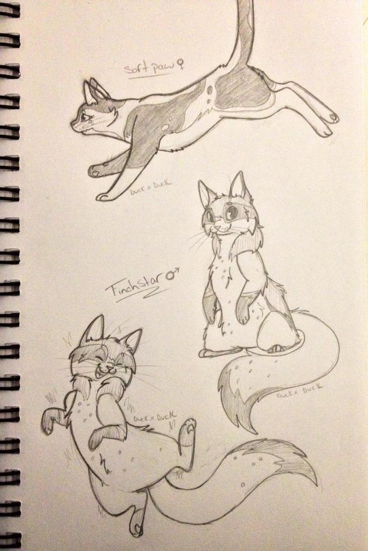 warrior cat sketches by duckxduck on deviantart