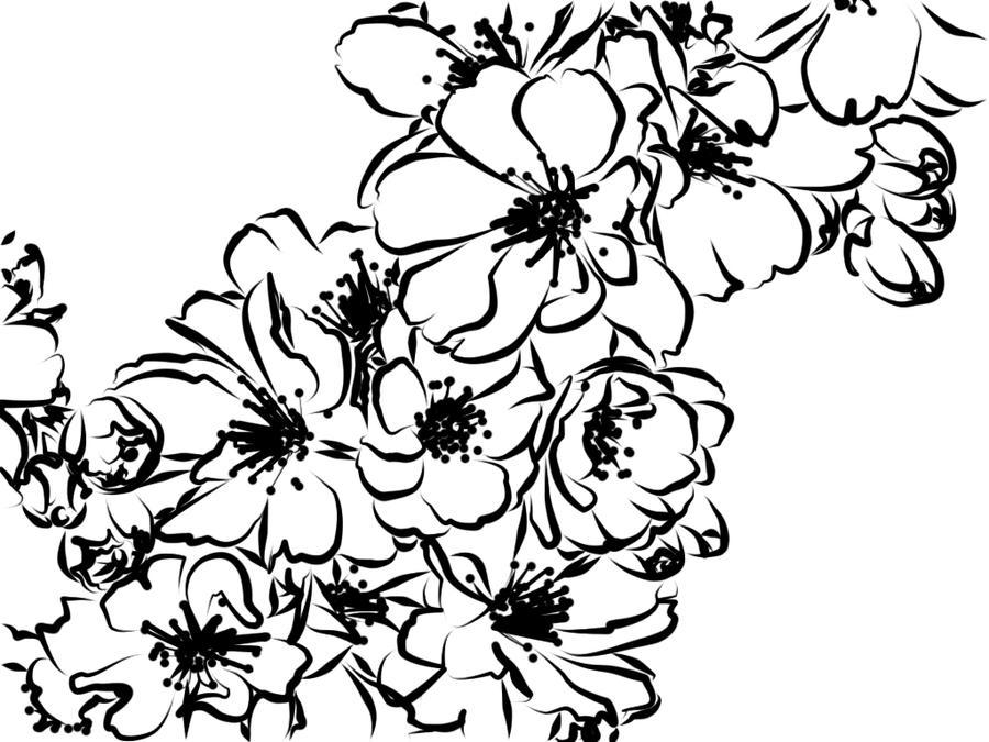 Line Art Plants : Image gallery line art flowers