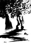 Logan et l'arbre...