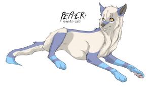 PeppermintSquid's Profile Picture