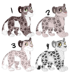 Snow Leopard Cub Adopts [CLOSED]