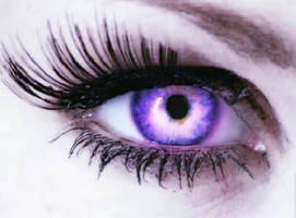 Purple by erin-eccentrik