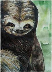 Slothity-Sloth by Phobia-Phobia