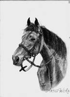 Horse by ArtiaWolf