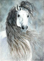 Andalusian horse by ArtiaWolf