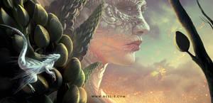 Dragons. Again.