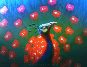 Social Media Peacock