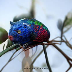 Fantastic Creatures: Macaw Rodent
