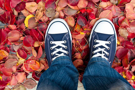Autumn comes...