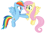 Dashie and Fluttershy